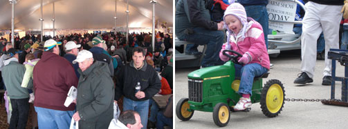Crowd inside one of the hangers and a participant in the tractor pull