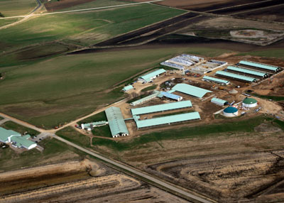 Aerial view of the Crave Farm